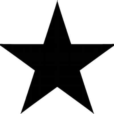 Ziggy vive (Diez canciones para creer en su regreso a laTierra)